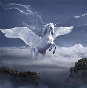 {#horse-3395135_1920_Ausschnitt}