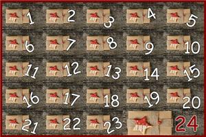 {#advent-calendar-1780949__340}