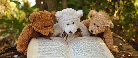 {#Teddys Panorama}